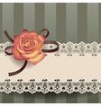 vintage lace ribbon vector image vector image