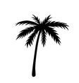 One palm tree outline vector image