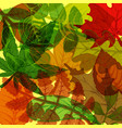 background of hand drawn colorful autumn leaves vector image vector image