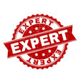 scratched textured expert stamp seal vector image
