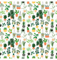 seamless pattern houseplants hand drawn vector image