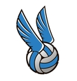 Volleyball ball with wings vector image vector image