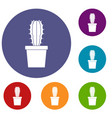 cactaceae cactus icons set vector image vector image