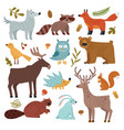 forest animals wolf raccoon and fox bear vector image