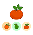 Fruit Icons Mandarin Lime Orange vector image vector image