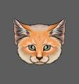 head of lynx portrait of wild cat animal hand vector image