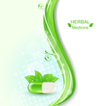 Pill and Green Leaves vector image vector image