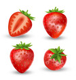 realistic set strawberry isolated on white vector image