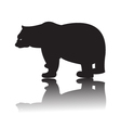Silhouette of black bear vector image