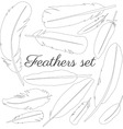 Collection of isolated flat style bird feathers vector image vector image