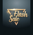 flash sale lettering with gold glitter vector image