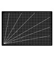 grid lines cutting mat craft scale plate card fabr vector image