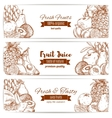 Organic natural fruit food sketch banner vector image vector image