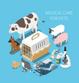 veterinary isometric composition vector image vector image