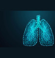 abstract image of a human lungs in the form vector image vector image