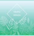 exotic leaves design vector image vector image