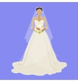 Fashion Bride in Luxury Dress Isolated Female vector image