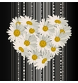 flowers in shape a heart vector image