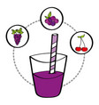fresh smoothie juice drink fruit grape cherry vector image