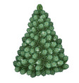 realistic green christmas tree holiday symbol vector image