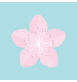 Sakura flower icon Japan blooming cherry blossom vector image