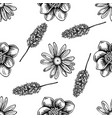 seamless pattern with black and white celandine vector image vector image