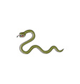 Serpent Coiling Side Isolated Cartoon vector image vector image