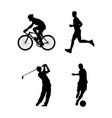 sports i vector image