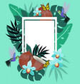 summer background with hummingbirds coconut vector image