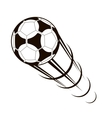 Championship soccer ball zooming through the air vector image vector image