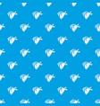 cowboy neckerchief pattern seamless blue vector image vector image