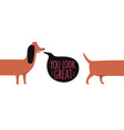 funny with brown long body dachshund in pink hat vector image vector image