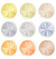 round polished knob centric circles with different vector image vector image