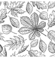 Seamless pattern with autumn leaves Hand vector image vector image