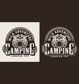vintage monochrome camping emblem vector image vector image