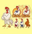 chicken chef vector image vector image
