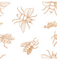 elegant seamless pattern with honey bees hand vector image