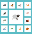 flat icons kine chipmunk hound and other vector image vector image