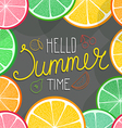 Hello summer time with fruits vector image vector image