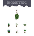 isometric plant set of blossom tree fern and vector image