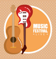 music festival live with electric and acoustic vector image