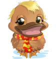 cartoon duck swimming vector image vector image