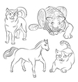 cat dog horse tiger vector image vector image
