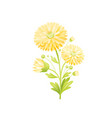 chrysanthemum flower floral icon realistic vector image