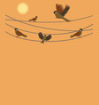 sparrows sitting on wires on an orange background vector image