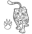 tiger with paw print Coloring Pages vector image vector image