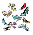 women shoes on white background vector image