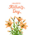 mothers day card with orange lilies and lettering vector image vector image