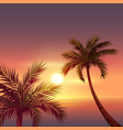 sunset on tropical island black silhouette of vector image