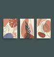 tropical leaves wall art set abstract vector image